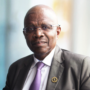 Professor Wiseman Nkhulu